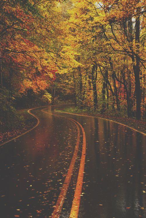 fallroad